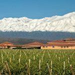 Finca Decero of Mendoza, Argentina joins the Bancroft portfolio