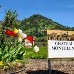 Estate Cabernet Sauvignon, Chateau Montelena 2015