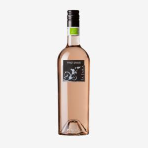 Pinot Grigio Rosato, La Jara 2019 1