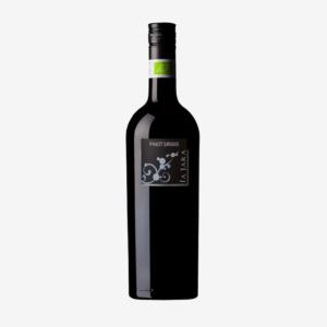 Pinot Grigio Veneto, La Jara 2019 1